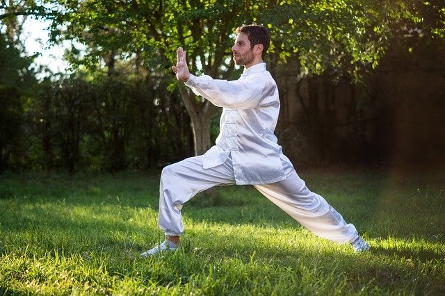 A Brief Introduction To The Professional Martial Art Fighter
